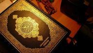 سبب نزول سورة غافر