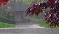 دعاء الريح والمطر