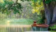 خاطرة عن الطبيعة