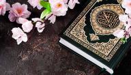 فضل تعليم القرآن الكريم