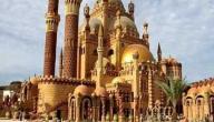 بحث عن الرسول محمد