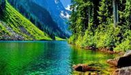 موضوع عن الطبيعة وجمالها