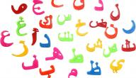 موضوع تعبير عن اللغة العربية للصف الخامس