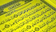 فضل قراءة سورة آل عمران