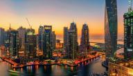 طرق الاستثمار في دبي