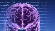 علاج الموت الدماغي