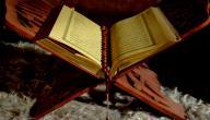 آيات الرزق في القرآن الكريم