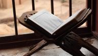 آيات نعيم الجنة
