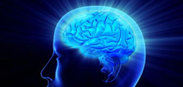 يبدأ النشاط العقلي بالتراجع في سن 45