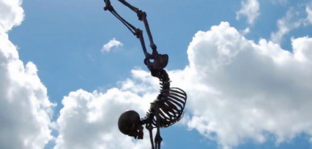 كيف تبني عظامك؟