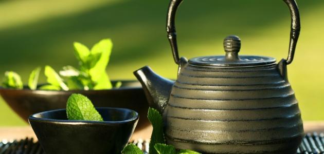 أثر الشاي الأخضر في تأدية الوظائف الأساسية في سن الشيخوخة