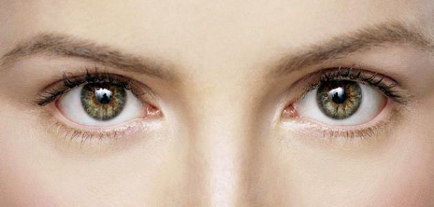 التركيز على التغذية لصحة العيون