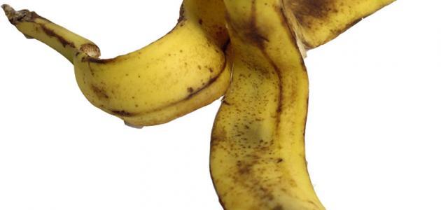 كيف يمكن أن تكون قشور الموز جيدة للنباتات؟