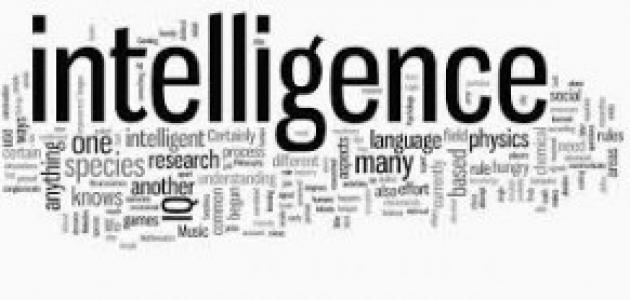 أنواع الذكاء البشري