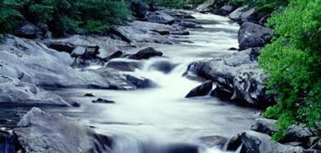 نهر الجنون