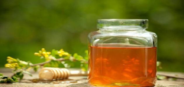 فوائد عسل الشفلح