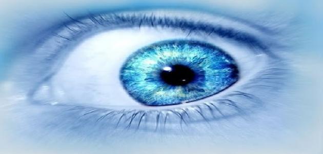 ما الفرق بين العين والحسد
