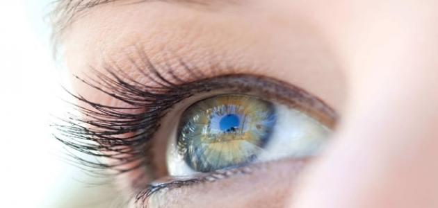 كيف تجعل بياض العينين أكثر نصوعاً