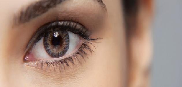 علاجات منزلية للتخلص من التجاعيد تحت العينين