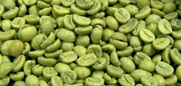 القهوة أداة من أدوات إنقاص الوزن الفعالة