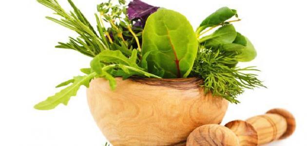 طريقة علاج الكلى بالأعشاب