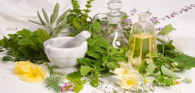 الأعشاب الطبية وفوائدها