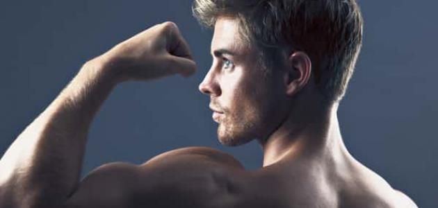 طرق زيادة هرمون الذكورة
