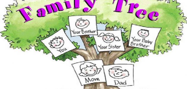 طريقة معرفة النسب وشجرة العائلة