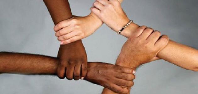 العلاقة بين التنوع الثقافي والتمييز العنصري