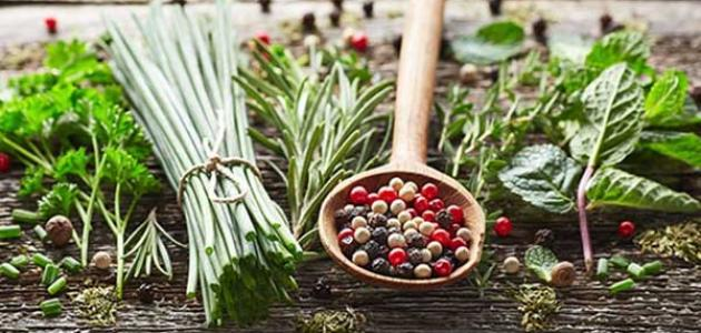 علاج الدم في البول بالأعشاب