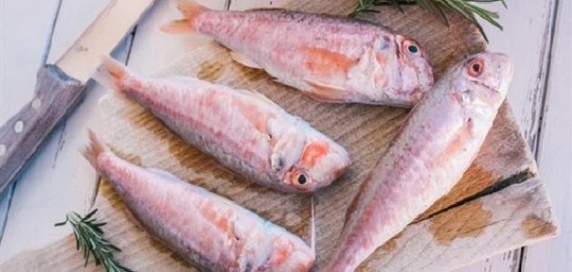 أغلى أنواع السمك