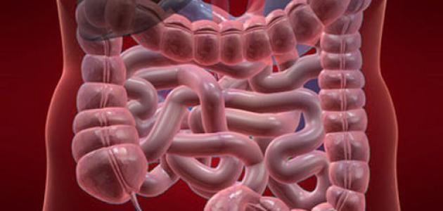 علاج سرطان القولون بالأعشاب