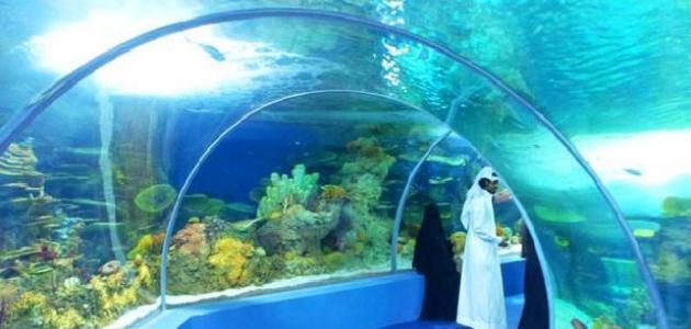أماكن سياحية في جدة للعائلات