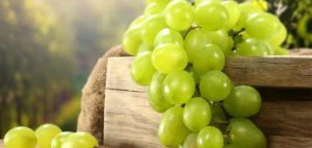 فوائد العنب الأخضر للجنس