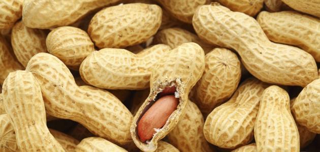 فوائد الفول السوداني لمرضى السكر