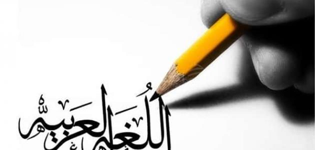أقسام الصفة في اللغة العربية
