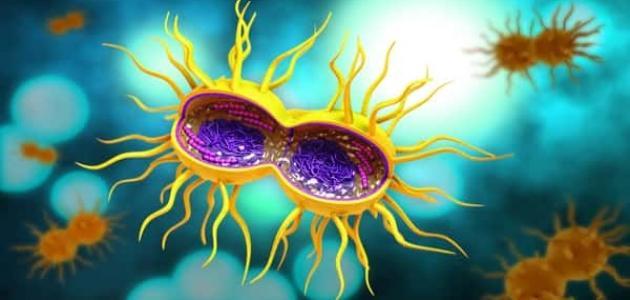 الأمراض التي تنتقل عن طريق الاتصال الجنسي
