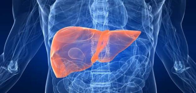 معلومات عن الفشل الكبدي
