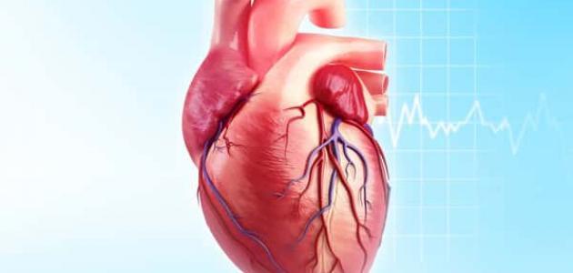 أمراض القلب والشرايين الأكثر شيوعًا