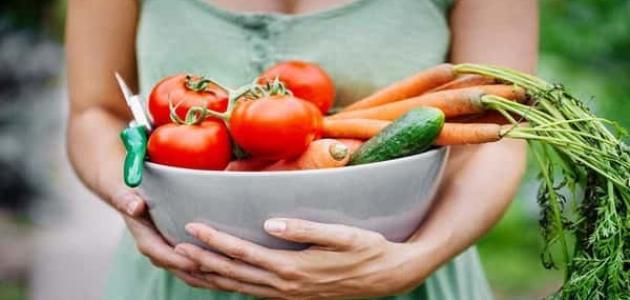 فوائد النظام النباتي للجسم