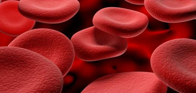 طرق علاج فقر الدم