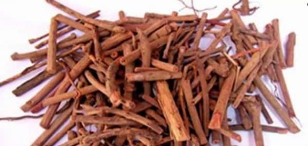 أضرار عشبة الفوة