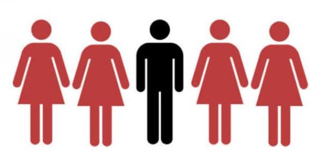 للراغبين في التعدد.. القضاء يعترف بالزوجة الثانية دون موافقة الأولى