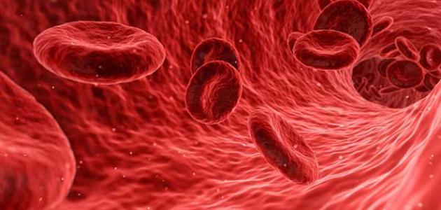 ما هي أعراض حساسية الدم