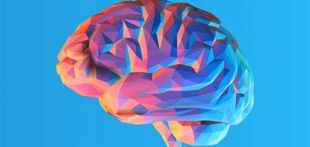 طرق علاج ضمور المخ