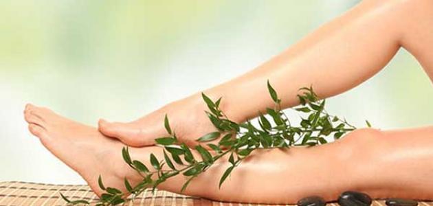 علاج دوالي الساقين بالأعشاب