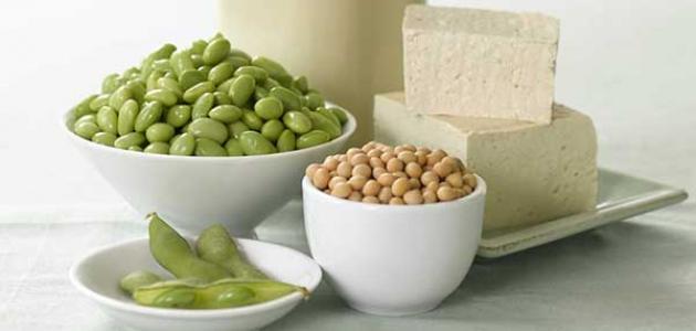 ما هي مصادر البروتين النباتي