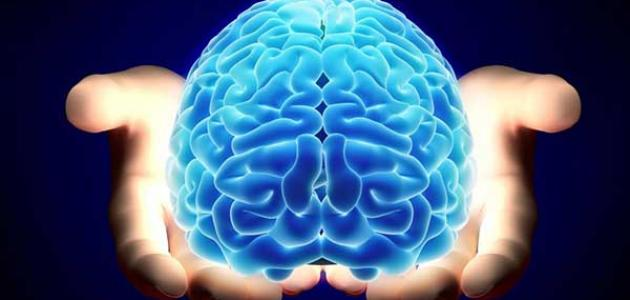 أنواع القدرات العقلية
