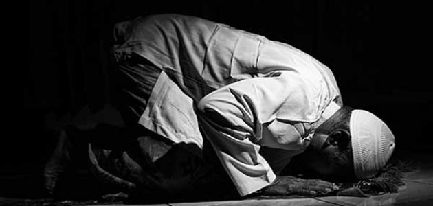 دعاء صلاة الوتر - موسوعة وزي وزي