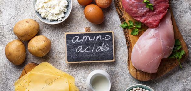 مصادر الأحماض الأمينية